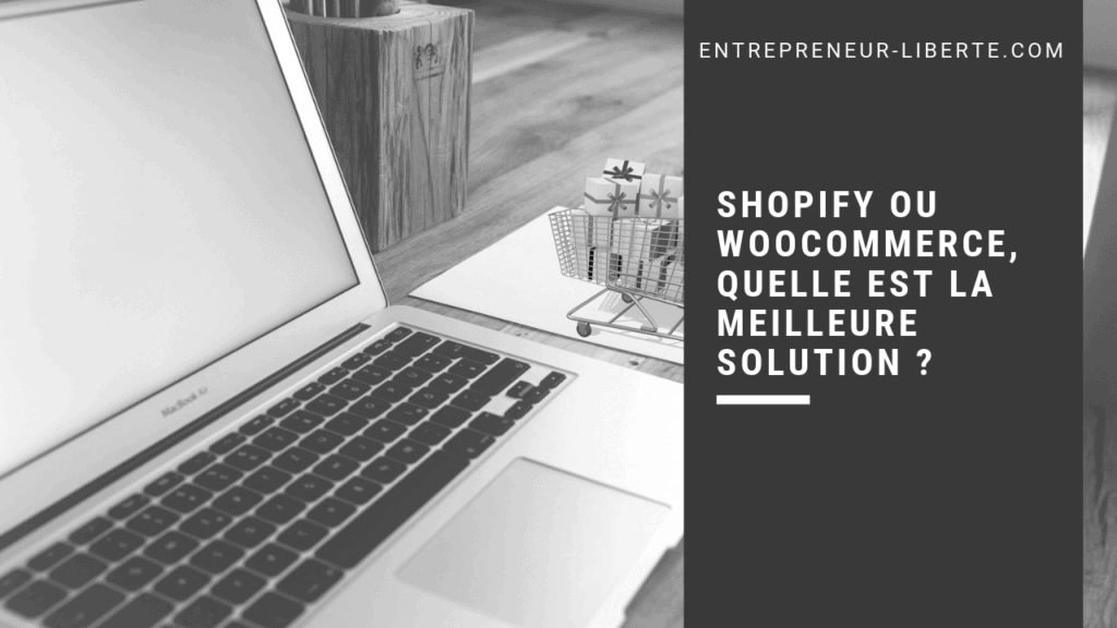 Shopify ou WooCommerce, quelle est la meilleure solution pour du dropshipping ou du Print on demand (POD)