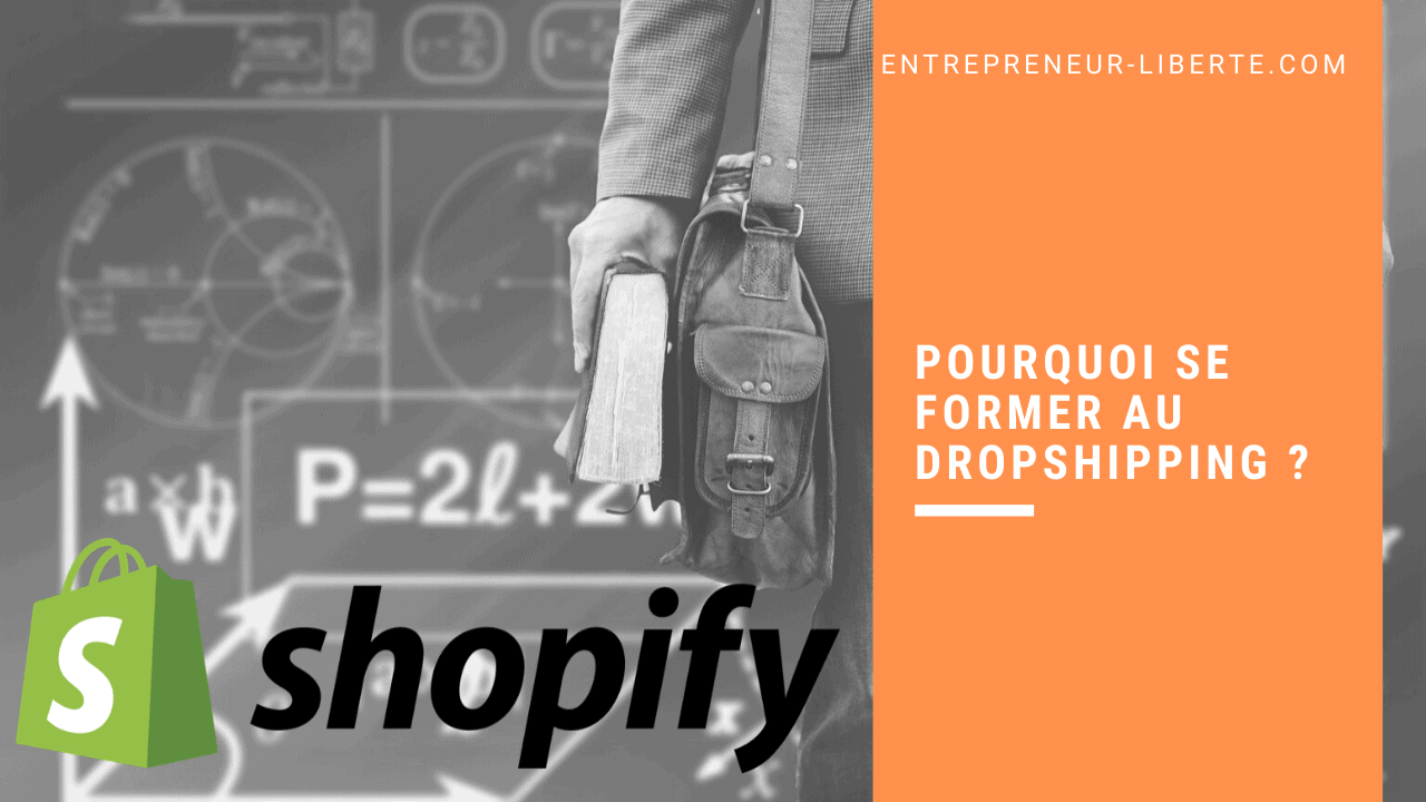 Pourquoi se former au dropshipping