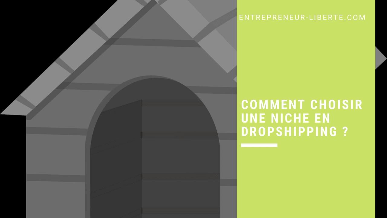 Comment choisir une niche en dropshipping